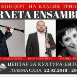 Концерт на Исмаил Лумановски класик трио